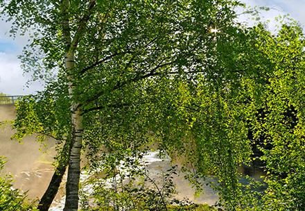 Kongsberg by lite bilde2