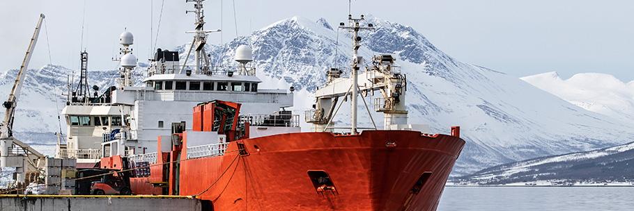 Tromsoo by rektangel bilde